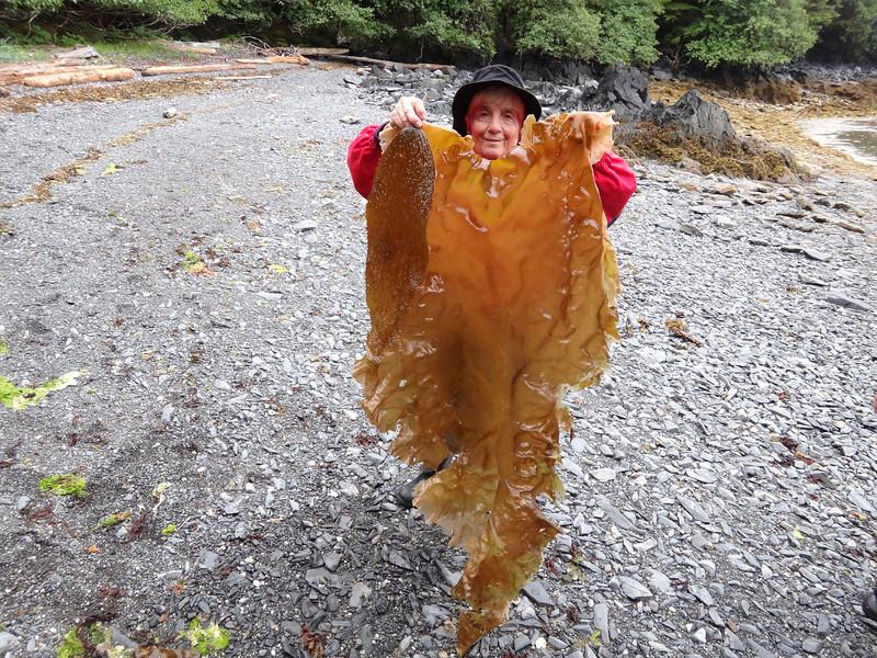 Alaska Indian village beach natural finds_02
