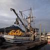 Alaska Sitka harbor_01 (1)
