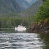 Alaska Zhilo Cove Moon Angel  _02