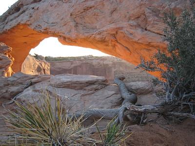 Arches National Park Nikon Photoshoot
