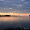 February 8, 2014<br /> <br /> Lake Washington <br />  Lake Washington Road<br />  Glen Allen, MS