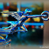 """""""GODDESS OF SPEED"""" <br /> <br /> View the pp'd version that was my Daily Photo on Friday, January 30, 2015 here:<br /> <br /> <a href=""""http://godschild.smugmug.com/DailyPhotos/Daily-Dose-of-One-A-Day-2014/i-6jDQ7SP/A"""">http://godschild.smugmug.com/DailyPhotos/Daily-Dose-of-One-A-Day-2014/i-6jDQ7SP/A</a><br /> <br /> """"I have one speed; I have one gear: go!"""" ~ Charlie Sheen<br /> <br /> I couldn't resist photographing this classically beautiful  hood ornament on the """"1930 Packard 734 Speedster (see yesterday's photo).<br /> <br /> Once upon a time in America, automobiles could be elaborate works of art, crowned by brazen ornaments that seemed ready to leap forth from the hood to lead the way.  This vintage hood ornament was made for Packard luxury automobiles in the 1930s/40s. Symbolizing the spirit of the company, the ornament features the figural winged goddess of speed with a tire held in her outstretched hands. The chrome-plated sculpture stands about 5 1/2 in. tall.  They sure don't make them like this anymore.<br /> <br /> My Homepage:  <a href=""""http://www.Godschild.smugmug.com"""">http://www.Godschild.smugmug.com</a><br /> <br /> (photo taken 12/24/2014)"""