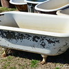 """OLD BATHTUBS""<br /> <br /> ""Every tub has to sit on its own bottom."" ~ a book written by Zora Neal Hurston<br /> <br /> This was the only one I spotted with the ""claw"" feet.<br /> <br /> Southern Tubs <br /> 23869 Highway 8<br /> Cleveland, MS<br /> <br />  <a href=""http://www.southerntubs.com"">http://www.southerntubs.com</a>"