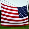 """""""USA FLAG"""""""