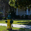 "March 28, 2015<br /> <br /> ""FIRE HYDRANT""<br /> <br /> ""Getting information off the Internet is like taking a drink from a fire hydrant."" ~ Mitchell Kapor<br /> <br /> What happened to the red fire hydrants that I remember as a child?  Now, they are a combination of colors or one single bright color. A sign of the times? You bet!<br /> <br /> Corner of California Street<br /> Leland, MS<br /> <br /> My Homepage:  <a href=""http://www.Godschild.SmugMug.com"">http://www.Godschild.SmugMug.com</a>"