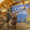 August 13, 2010<br /> ELK COUNTRY VISITOR CENTER<br /> Missoula, Montana