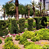 "Topiary<br /> <br /> ""BALLY'S HOTEL AND CASINO""<br />  Las Vegas, NV"