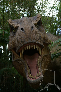 You been spotted by T-Rex. He is at Universal Studios Orlando Florida.