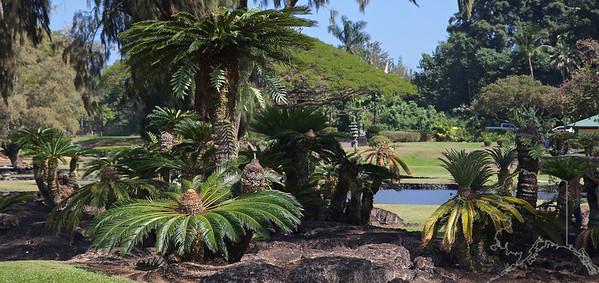 Queen Liliuokalani Gardens