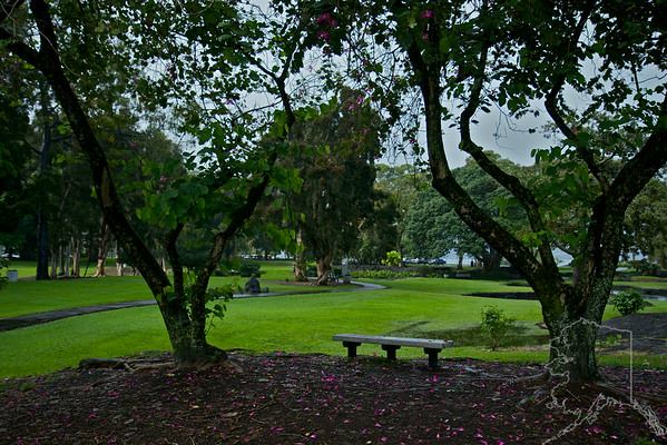We took a day trip from Maui to the Big Island. Had a great time. Queen Liliuokalani Gardens.