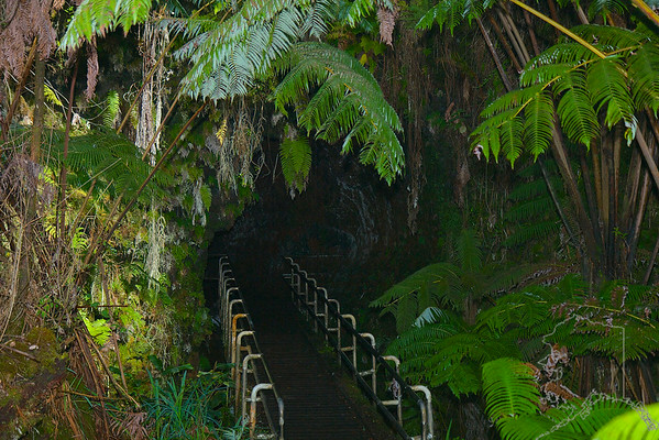 Entrance to Thurston Lava Tube.
