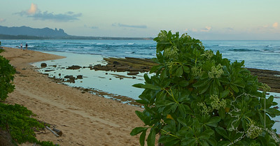 Kauai Beach Resort, This is their beach right off the grounds.