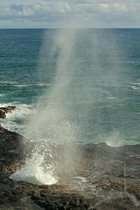 Spouting Horn Beach Park is a delightful lookout where you can watch a blowhole spout a plume of sea water into the air. This occurs whenever waves are forced under the lava shelf and up through an opening in the rocky coast. Depending on the tide and ocean conditions, the water may spout as far as 50 feet into the air. If the light is right, you may be able to catch a rainbow in the sea spray.