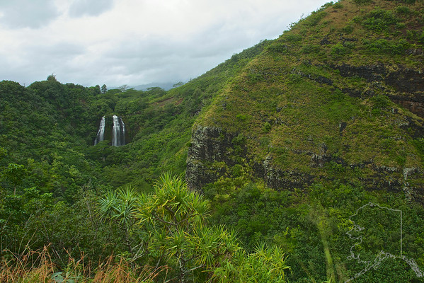 """If you're wondering about the origin of the name Opaeka'a, it dates back to days when shrimp roamed the river and were seen rolling in the turbulent waters at the base of the falls. """"Opae"""" is the Hawaiian word for """"shrimp,"""" and """"ka'a"""" means """"rolling."""""""