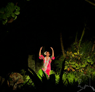 Best Luau on the Island of Kauai. Smith's Luau. They have a great night time show and the best food. It is held rain or shine.