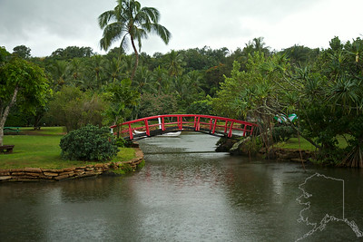Smith's Tropical Paradise. As you look at this image you will see that it was raining. Yes I was getting wet as it rains a lot on Kauai.