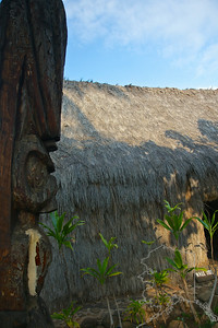 The three thatched houses at Hale Kahiko replicate part of an ancient Hawaiian village. The location at the back of a shopping center isn't without its irony, but the site nonetheless offers an insightful glimpse of Hawaiian life before Western development swept the landscape.  The buildings are authentically constructed of ohia-wood posts, native pili grass thatch and coconut-fiber lashings. The grounds are planted in native flora that Hawaiians relied upon for food and medicinal purposes. Each hale (house) had a different function; one was used as family sleeping quarters, one as a men's eating house, and the third as a workshop where women made tapa. Inside you'll find gourd containers, woven baskets, poi pounders and other essentials of Hawaiian life.