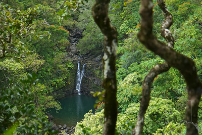 Cascading over a 200-foot cliff is Lower Puohokamoa Falls, tucked away from the Hana Highway.