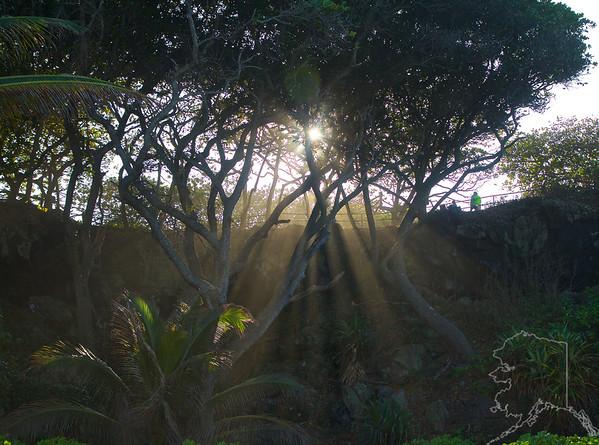 A heavy sea spray gives a good effect with the sun.