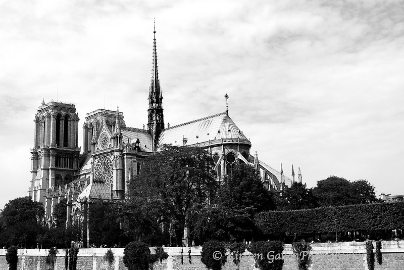 Notre Dame, Paris.  I took this while on a boat ride along the Seine River.