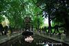 Le Jardin, Paris