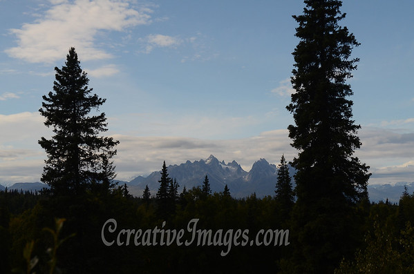 On Parks Highway Alaska, Mt Mckinely area 100 miles away.<br /> Photography by: Ccreative Images Photography. <br /> All rights reserved.
