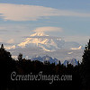 On Parks Highway Alaska, Mt Mckinely 100 miles away.<br /> Photography by: Ccreative Images Photography. <br /> All rights reserved.