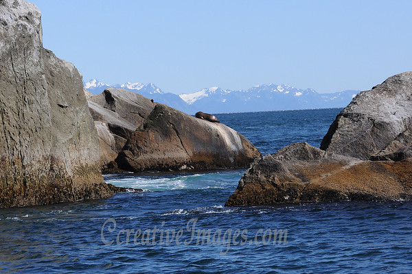 Seward Alaska. Glacior Cruise.<br /> Photography by: Ccreative Images Photography. <br /> All rights reserved.