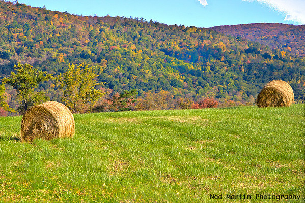 View of the Blue Ridge from Route 250 in Albemarle County, VA