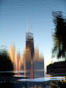 Reflections, Lincoln Park Pond, Chicago, IL