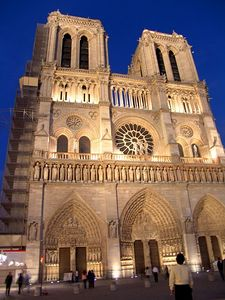 Man admiring Notre Dame at night