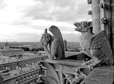 Gargoyles over Paris