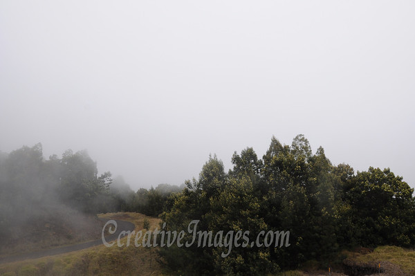 """Maui Island-1/2012- Driving up the Waipoli Rd near Haleakala. At 5000 feet.<br /> Photos by:  <a href=""""http://www.ccreativeimages.com"""">http://www.ccreativeimages.com</a>, chrismike2009.<br /> All rights reserved."""