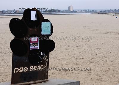 San Diego California. Ocean Beach. 3.2014