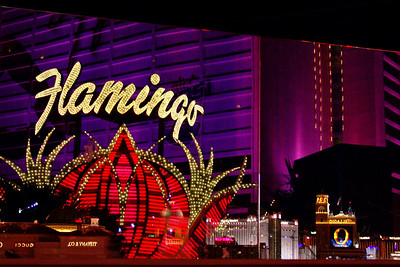 Reflection of the Flamingo Hotel sign, Las Vegas Strip