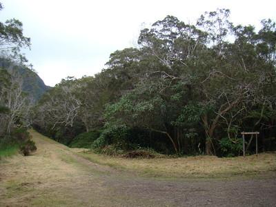 Trou de Fer (Forêt de Bélouve)