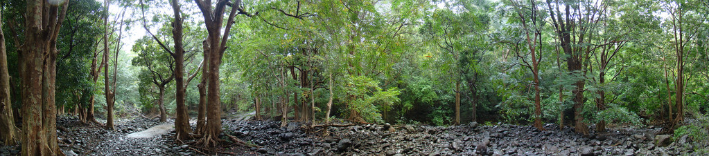 Black River Gorges NP