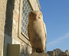 Owl statue, Acropolis - Symbol of the goddess Athena