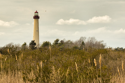Cape May Lighthouse, 1859