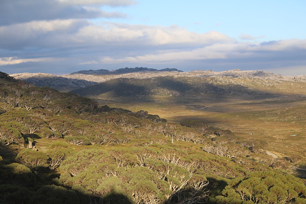 Mount Kosciuzko
