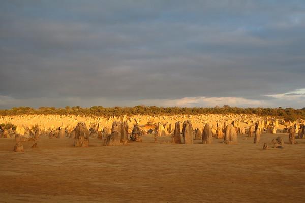 Pinnacles (Nambung National Park)