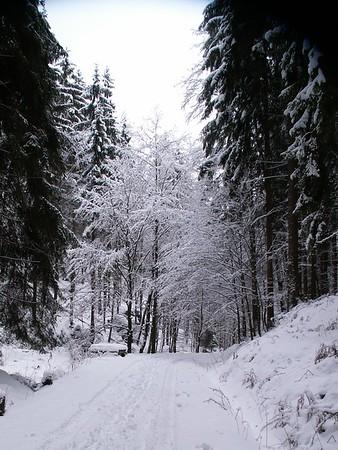 Sächsische Schweiz - Winter