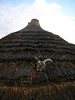 Skull on a hut roof - Shangaan cultural village
