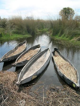 The Wetlands of the Okavango Delta