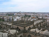 Cathedral roof viewed from the Giralda