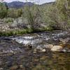 Rush Creek