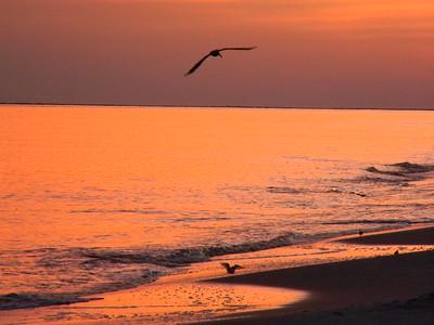 Dauphin Island Sunset