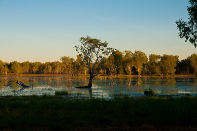 Sandy Billabong - Kakadu Nationalpark
