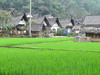 Napa, a traditional Sundanese village that has stayed like the olden times, Java, 9/4/2012
