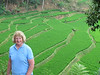 Shirley and terraced rice fields in Napa, a traditional Sundanese village that has stayed like the olden times, Java, 9/4/2012